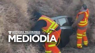 Autos quedan atrapados por una invasión de plantas rodantes   Noticias Telemundo