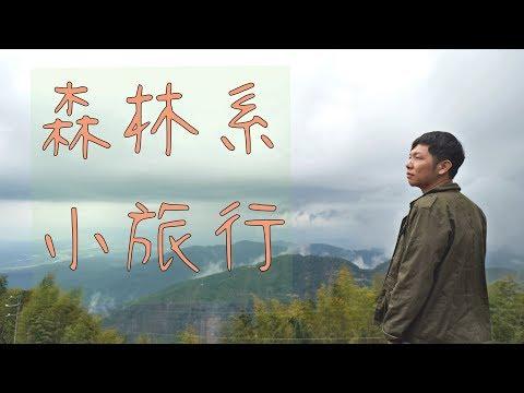 雲林古坑一日遊》 草嶺石壁森林療癒小旅行 | 蔡劭TsaiShau