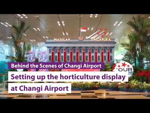 National Day 2019: Setting up the horticulture display at Changi Airport