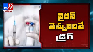 Antibody treatment for COVID-19 could be a game changer - TV9 - TV9