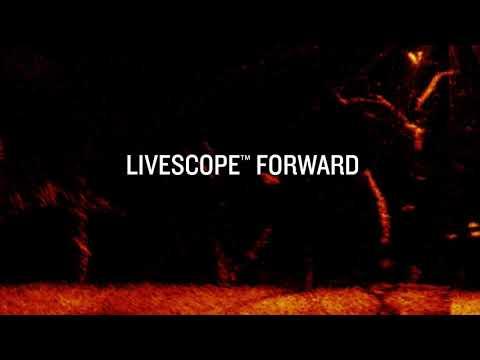 Garmin présente Panoptix LiveScope : la technologie de sondeur la plus spectaculaire qui soit.
