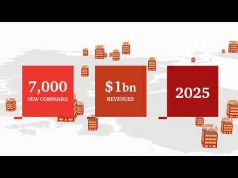 PwC's Accelerator: helping innovative high-growth companies go global faster & smarter