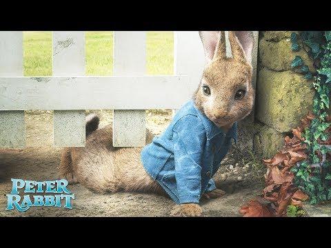 PETER RABBIT. El héroe de tu jardin. En cines 23 de marzo.