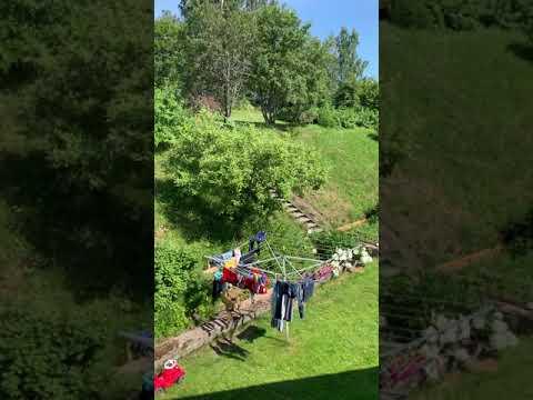 ชมสวนจากมุมบนหลังบ้านดอกไม้เมื