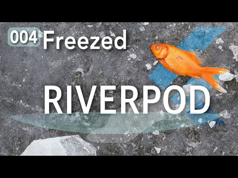 Riverpod Tutorial 04 - Freezed: Unions and Data Classes