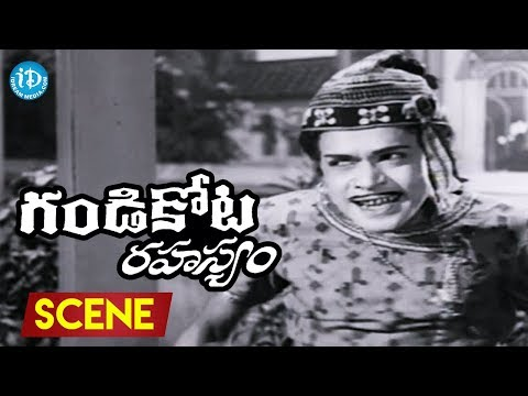 Gandikota Rahasyam Movie Scenes - Raja Babu Comedy    NTR     Jayalalitha