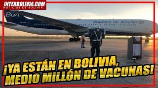 ???? ASÍ LLEGO a BOLIVIA medio millón de vacunas! para luchar contra la CRISIS SANITARIA ????