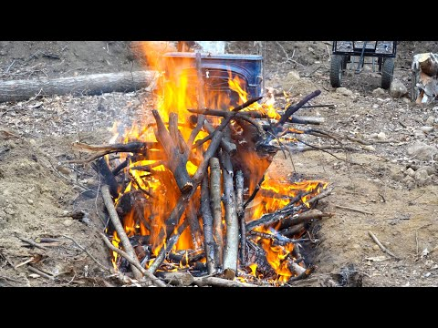 Biochar in the Forest, Creating the World's Richest Soil, Self Reliance Garden, Planting Fruit Trees