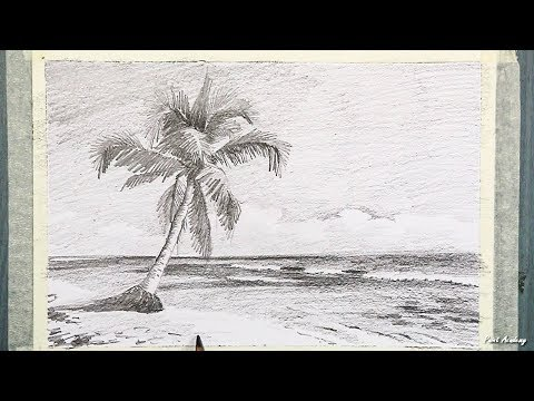 How to Draw A Beach Landscape with a coconut tree in Pencil