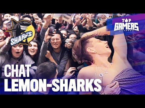 CHAT de los LEMON-SHARKS (20NOV) | TOP GAMERS ACADEMY