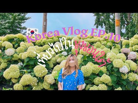 🇰🇷-Korea-vlog-EP-10-:-เที่ยวชุ