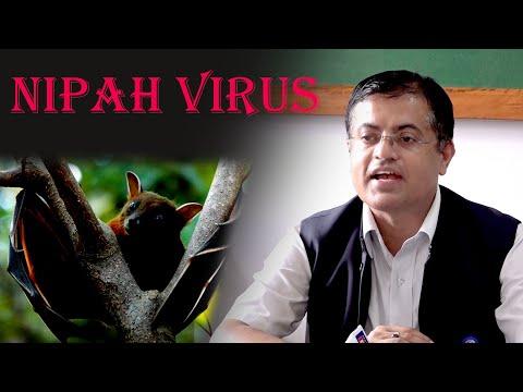अन्तर्वार्ता | निपा भाइरसबारे जानकारी दिँदै स्वास्थ्य प्रवक्ता डा. कृष्णप्रसाद पौडेल