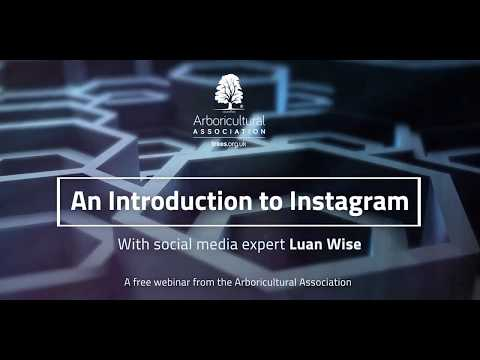 Webinar: An Introduction to Instagram (with Luan Wise)