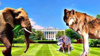 How to Keep Elephants and Wolves Out of Your Yard