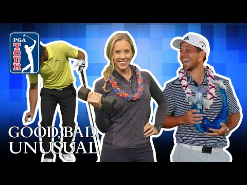 New Year?s Resolutions, rules changes & Schauffele?s record come-back 2019