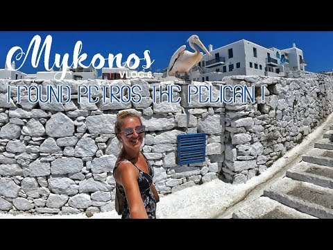 Meeting Petros the Pelican in Mykonos – Vlog 6