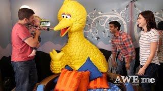 Big Bird Nest Bed! - Super-Fan Builds