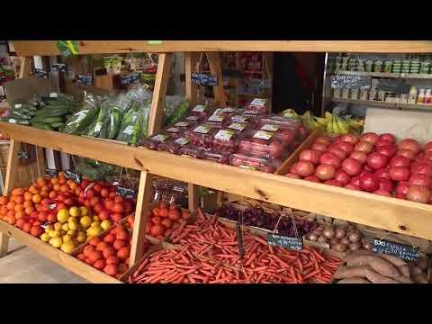 Правителството предлага половината площ в магазините да е за родни храни