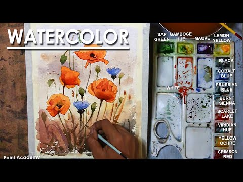 Watercolor Flowers Painting : Poppies and Cornflowers