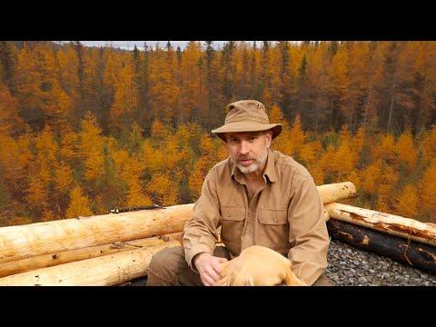 November Rain | Log Cabin Sauna Ep  7 | Canadian Wilderness Off Grid Living