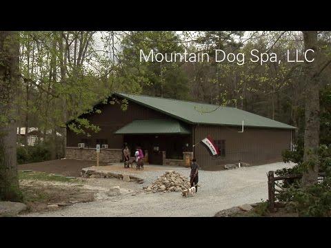 Mountain Dog Spa, LLC