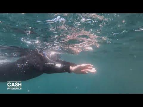nouvel ordre mondial | Elise Lucet nage avec les thons (Extrait 3)