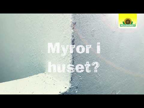 Neudorff - Myr Effekt Metalldosa