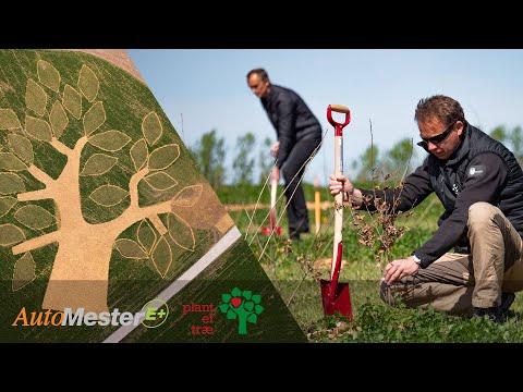 AutoMester E+ og Plant et Træ - Ølsted Undervisningsskov