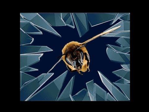 Five Finger Punch & Insane - Revolutionary Beehaviour - Amiga Demo (50 FPS)