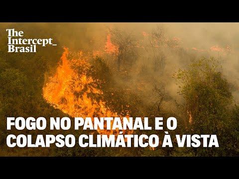 Fogo no Pantanal, rios secos no Paraguai e o colapso climático em curso