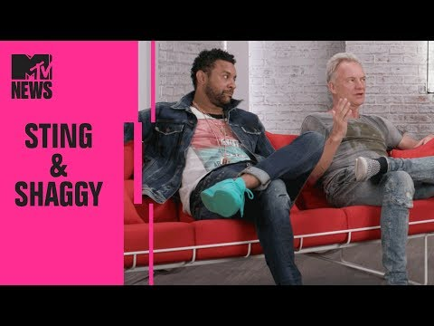 Sting & Shaggy on Their Joint Album '44/876' & Being an Unlikely Pairing | MTV News