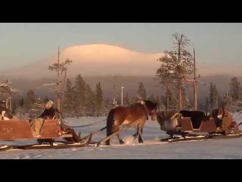 Häst och släde på Idre Fjäll