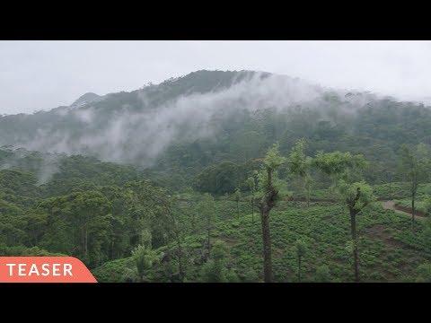 Sri Lankan Tea Farmers Fight Deforestation & Climate Change – Teaser