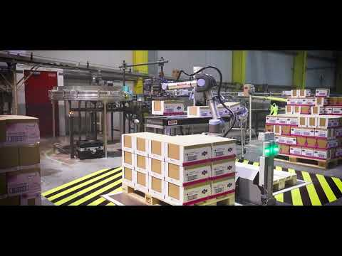 Collaborative robot in action