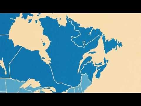 International Students in North America