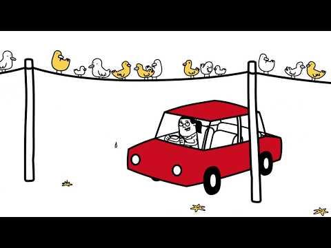 Ford vs. ptačí trus | Ford Česká republika