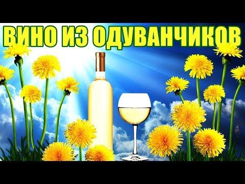 ВИНО ИЗ ОДУВАНЧИКОВ - РЕЦЕПТ photo