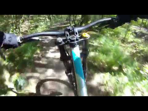 Mountainbike-Trail bei Mühlacker?