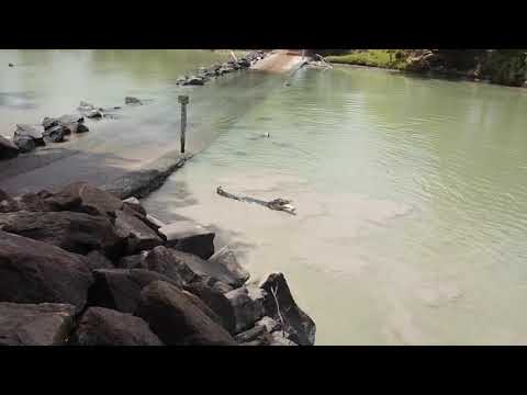 connectYoutube - Crocodile Snags Fisherman's Catch at Cahill Crossing
