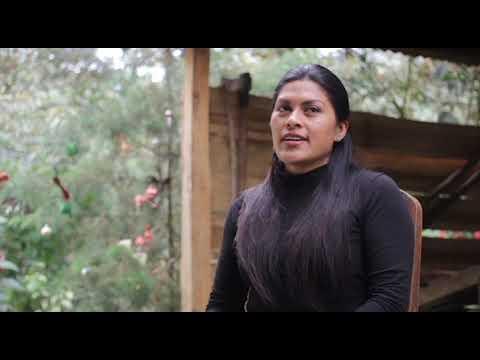 Okama Suei es la plataforma que reúne el saber de las mujeres indígenas y su cosmovisión cabécar