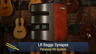 L.R. Baggs Synapse PA System Review