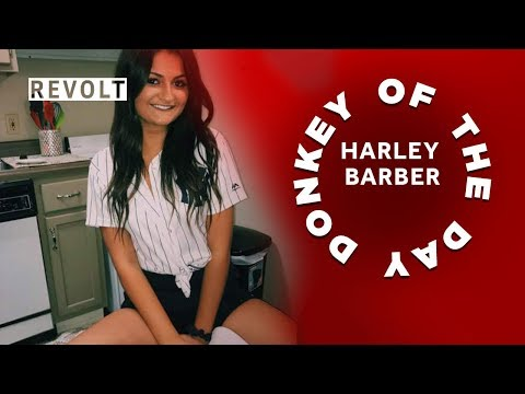 connectYoutube - Harley Barber | Donkey Of The Day