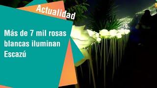 Más de 7 mil rosas blancas iluminan San Antonio de Escazú