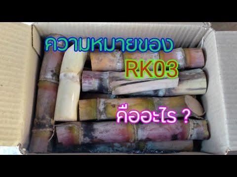 อ้อย-RK03--ความหมาย-ของ-อักษร-