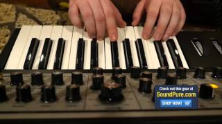 Moog Sub Phatty Analog Synthesizer - Quick n' Dirty