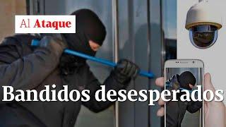 Bogotá, los bandidos desesperados después de la cuarentena | Al Ataque