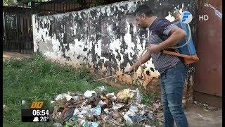 Todos contra el dengue: Minga ambiental en Fernando de la Mora