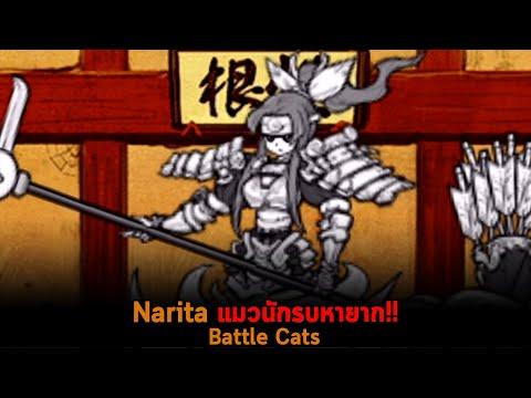 Narita-แมวนักรบหายาก-Battle-Ca