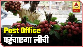 India Post to home-deliver litchi in Indian cities - ABPNEWSTV