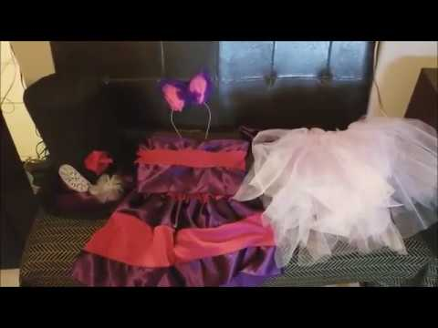 DIY Cheshire Cat Costume
